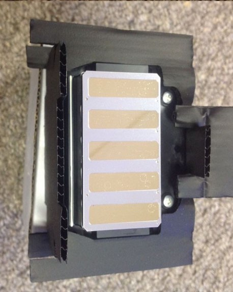 Genuine New Epson Printhead F191040 F191010 F191080